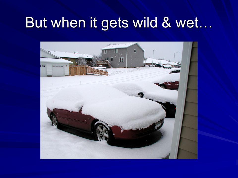But when it gets wild & wet…
