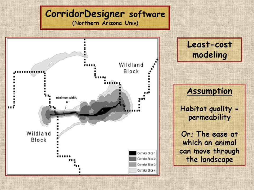 CorridorDesigner software (Northern Arizona Univ) Assumption Habitat quality = permeability Or; The ease at which an animal can move through the landscape Least-cost modeling