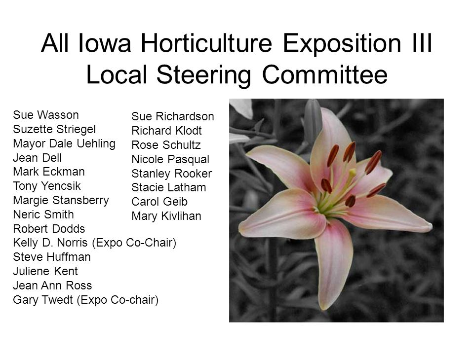 All Iowa Horticulture Exposition III Local Steering Committee Sue Wasson Suzette Striegel Mayor Dale Uehling Jean Dell Mark Eckman Tony Yencsik Margie Stansberry Neric Smith Robert Dodds Kelly D.