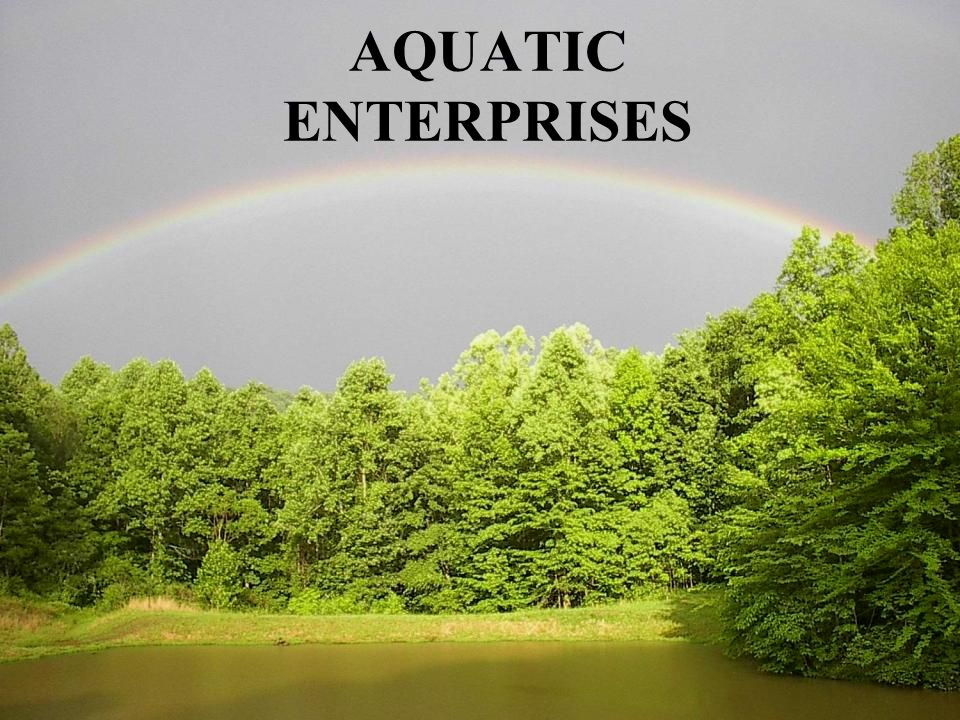 AQUATIC ENTERPRISES