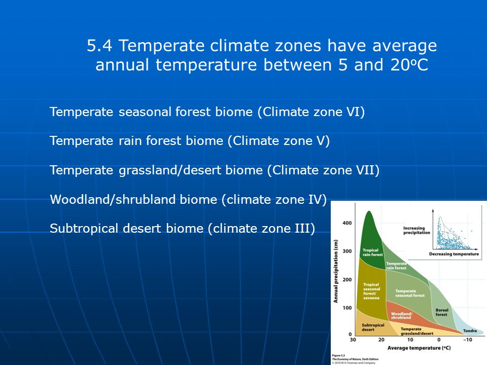 5.4 Temperate climate zones have average annual temperature between 5 and 20 o C Temperate seasonal forest biome (Climate zone VI) Temperate rain fore