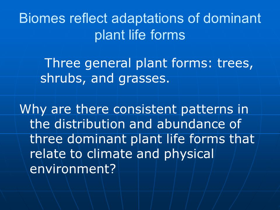 Biomes reflect adaptations of dominant plant life forms Why are there consistent patterns in the distribution and abundance of three dominant plant li