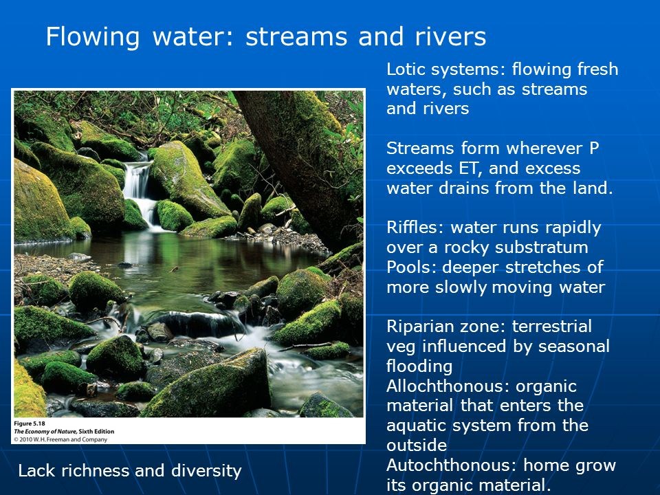 Flowing water: streams and rivers Lotic systems: flowing fresh waters, such as streams and rivers Streams form wherever P exceeds ET, and excess water