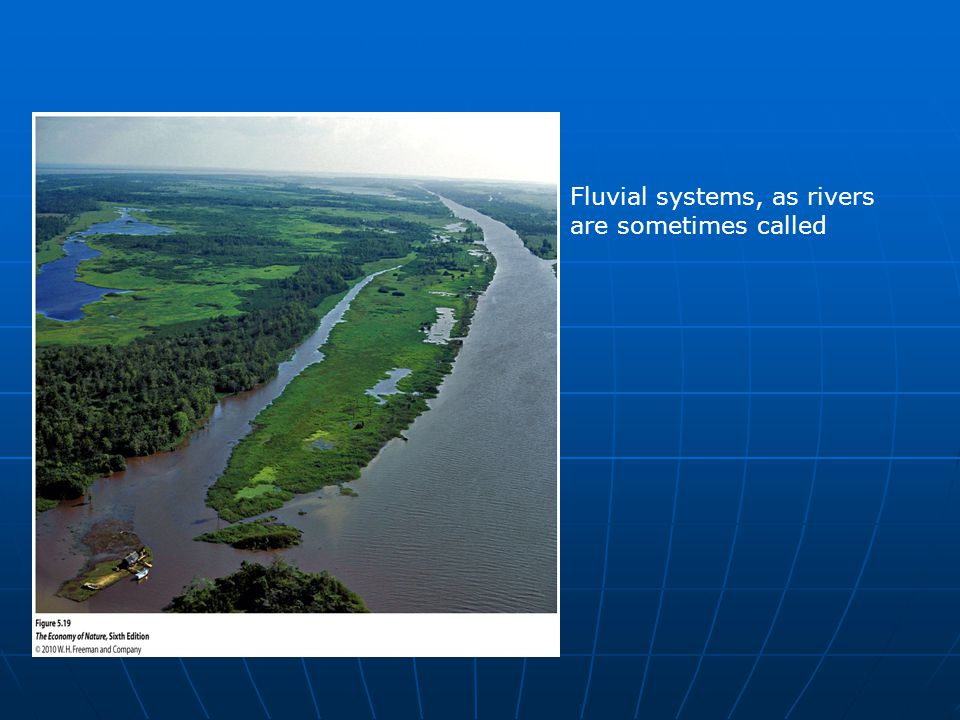 Fluvial systems, as rivers are sometimes called