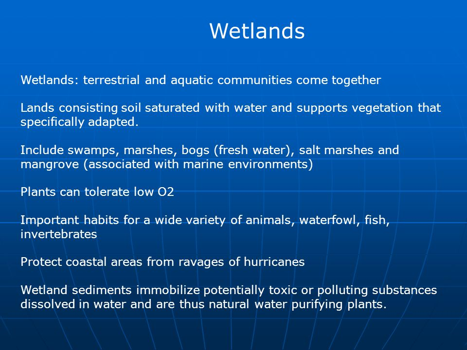 Wetlands: terrestrial and aquatic communities come together Lands consisting soil saturated with water and supports vegetation that specifically adapt