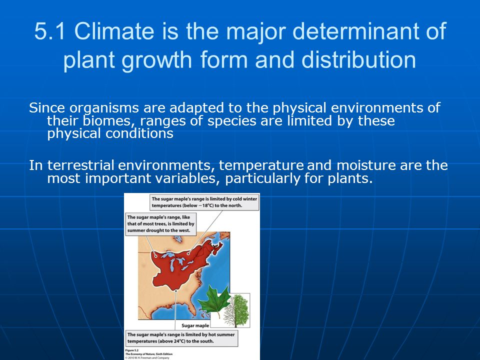5.1 Climate is the major determinant of plant growth form and distribution Since organisms are adapted to the physical environments of their biomes, r