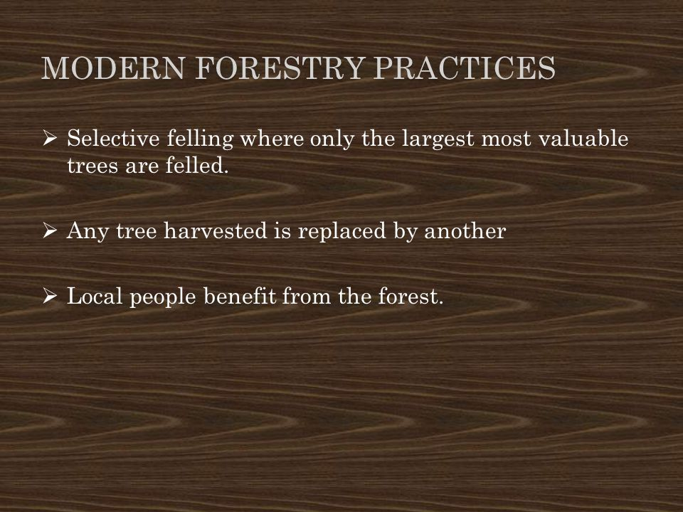 MODERN FORESTRY PRACTICES  Selective felling where only the largest most valuable trees are felled.  Any tree harvested is replaced by another  Loc