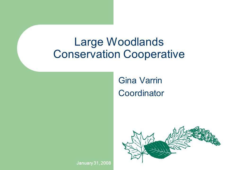 January 31, 2008 Large Woodlands Conservation Cooperative Gina Varrin Coordinator