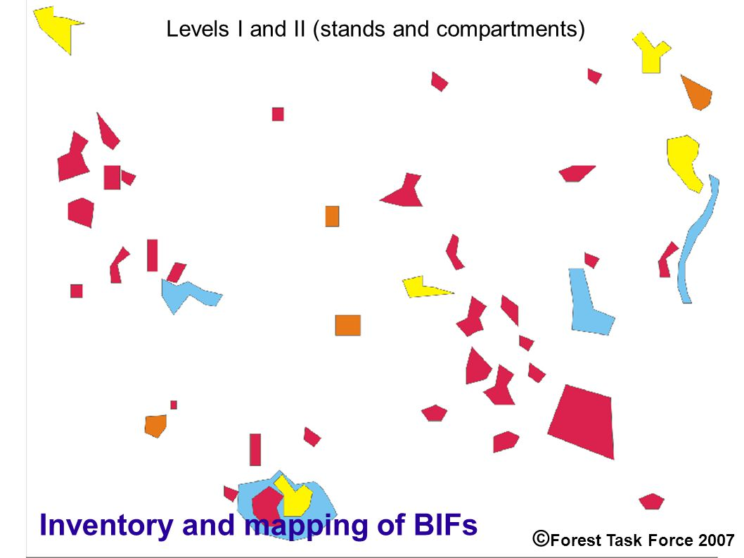 Levels I and II (stands and compartments) Inventory and mapping of BIFs © Forest Task Force 2007