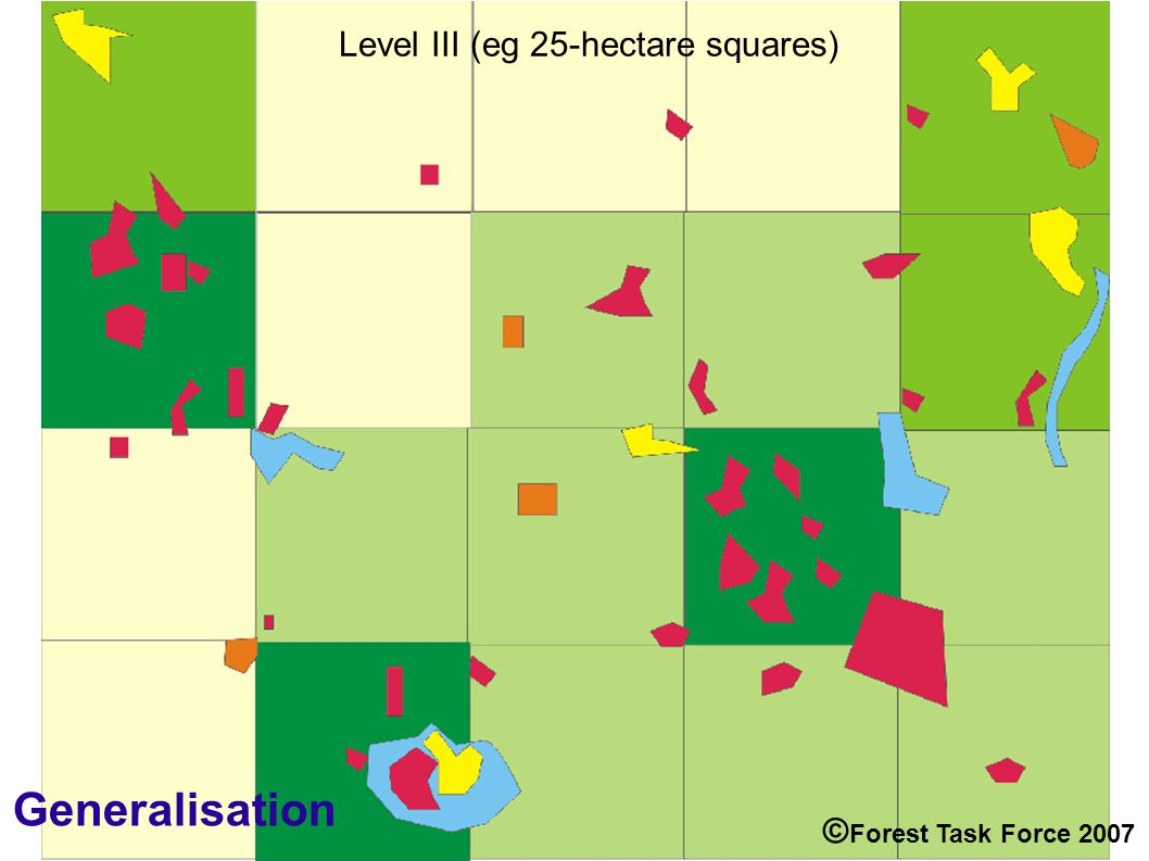 Level III (eg 25-hectare squares) Generalisation © Forest Task Force 2007
