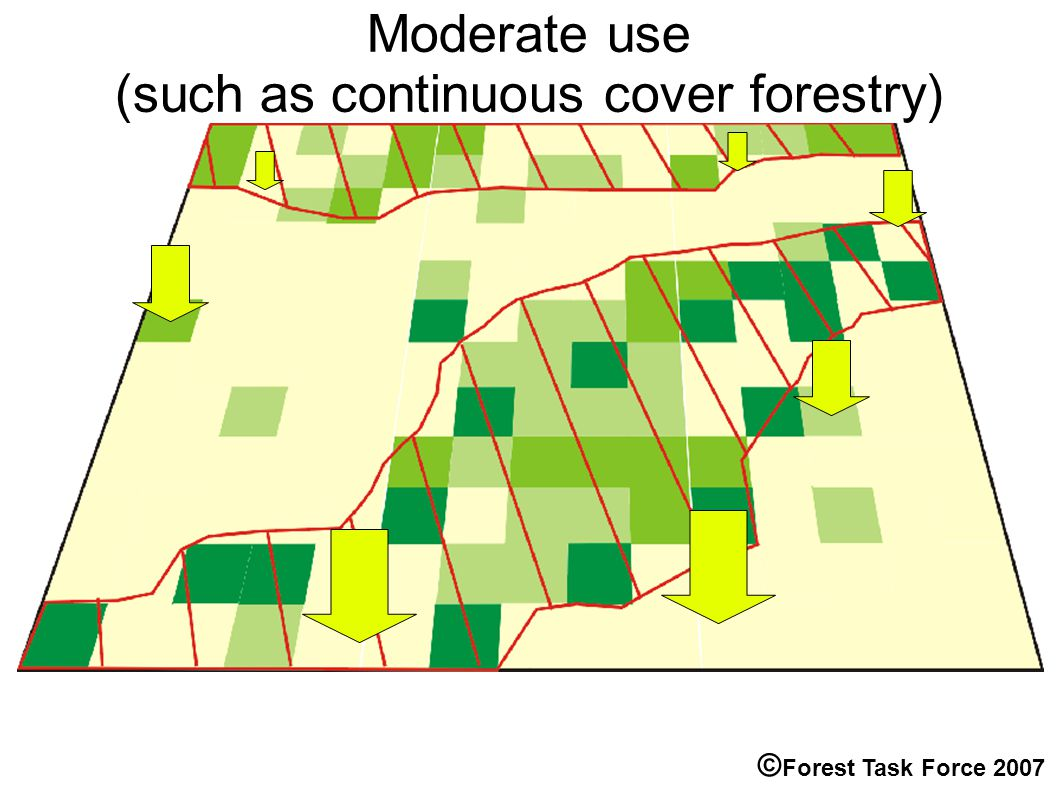 Moderate use (such as continuous cover forestry) © Forest Task Force 2007