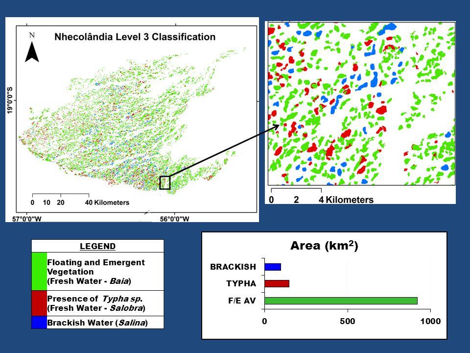 LEGEND Floating and Emergent Vegetation (Fresh Water - Baia) Presence of Typha sp. (Fresh Water - Salobra) Brackish Water (Salina)