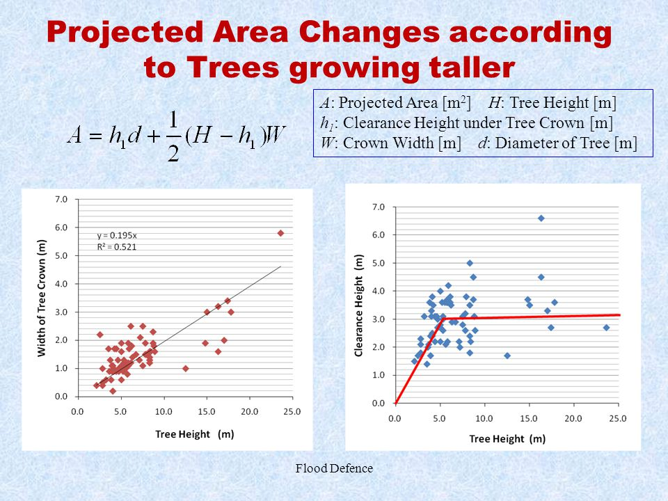 Projected Area Changes according to Trees growing taller Flood Defence A: Projected Area [m 2 ] H: Tree Height [m] h 1 : Clearance Height under Tree C
