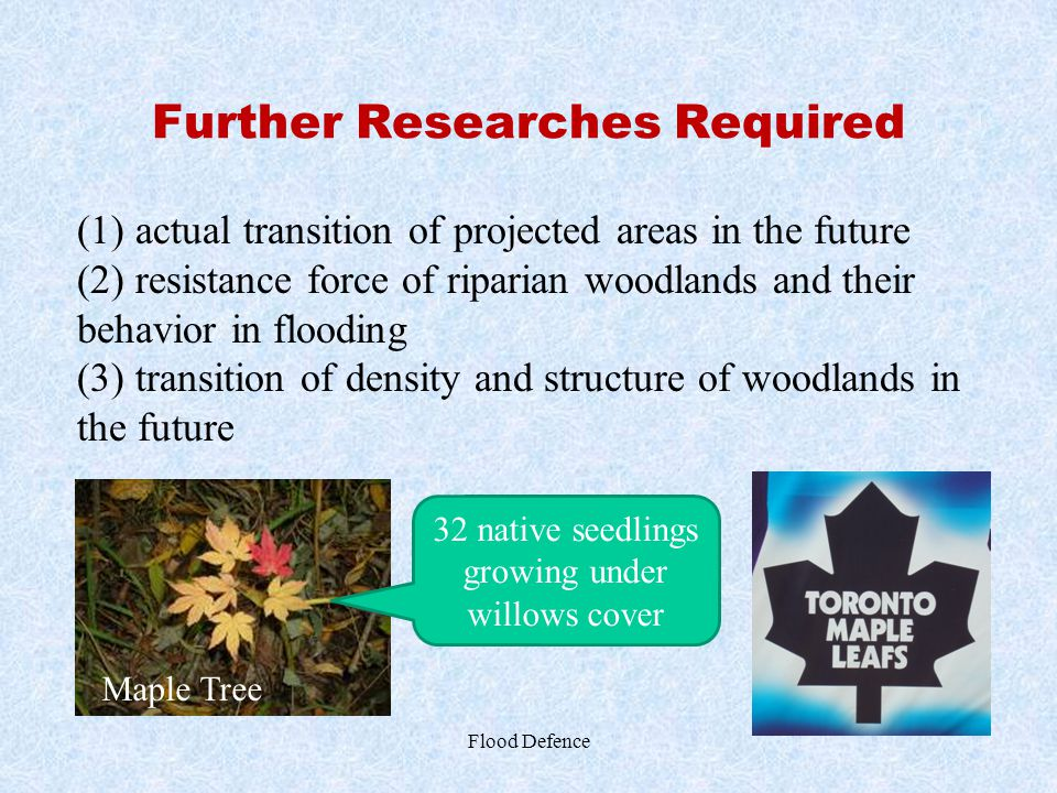 Further Researches Required Flood Defence (1) actual transition of projected areas in the future (2) resistance force of riparian woodlands and their