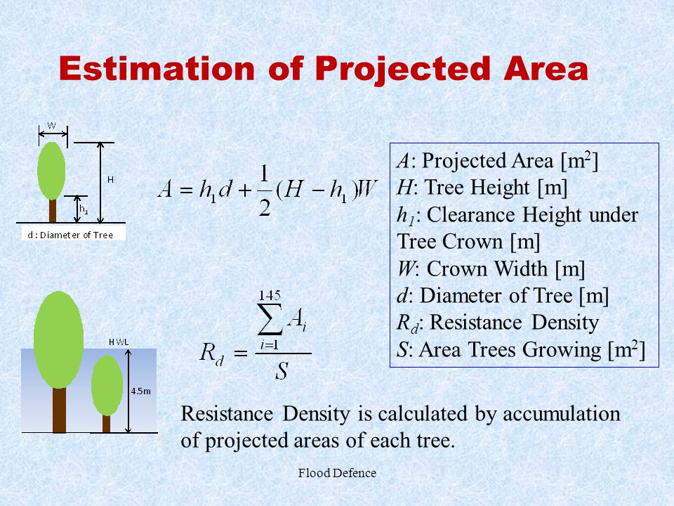 Estimation of Projected Area Flood Defence A: Projected Area [m 2 ] H: Tree Height [m] h 1 : Clearance Height under Tree Crown [m] W: Crown Width [m]