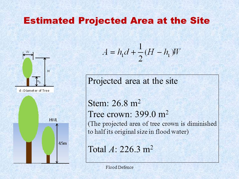 Estimated Projected Area at the Site Flood Defence Projected area at the site Stem: 26.8 m 2 Tree crown: 399.0 m 2 (The projected area of tree crown i
