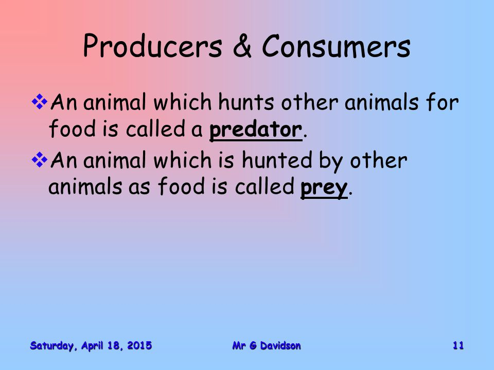Saturday, April 18, 2015Saturday, April 18, 2015Saturday, April 18, 2015Saturday, April 18, 201511Mr G Davidson Producers & Consumers  An animal which hunts other animals for food is called a predator.