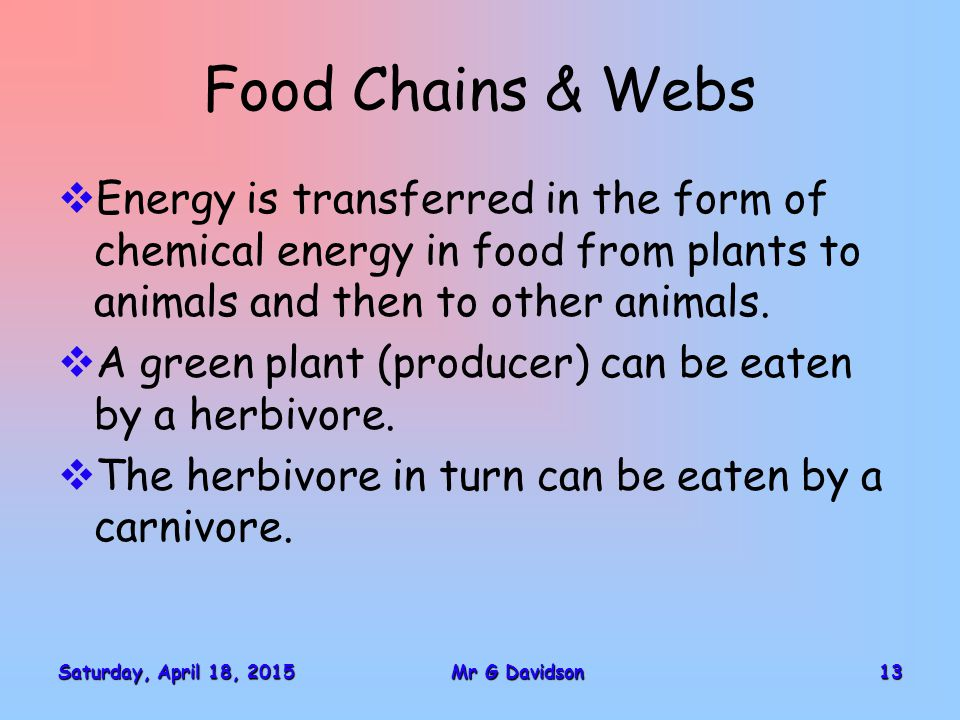 Saturday, April 18, 2015Saturday, April 18, 2015Saturday, April 18, 2015Saturday, April 18, 201513Mr G Davidson Food Chains & Webs  Energy is transferred in the form of chemical energy in food from plants to animals and then to other animals.