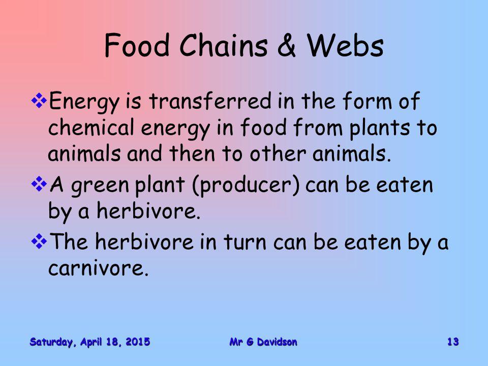 Saturday, April 18, 2015Saturday, April 18, 2015Saturday, April 18, 2015Saturday, April 18, 201513Mr G Davidson Food Chains & Webs  Energy is transfe