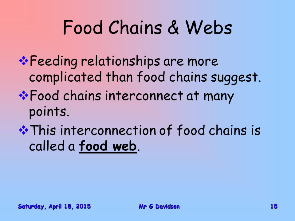 Saturday, April 18, 2015Saturday, April 18, 2015Saturday, April 18, 2015Saturday, April 18, 201515Mr G Davidson Food Chains & Webs  Feeding relationships are more complicated than food chains suggest.