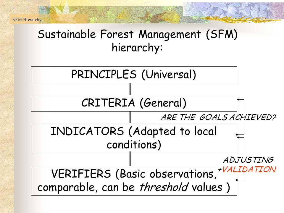 Sustainable Forest Management (SFM) hierarchy: PRINCIPLES (Universal) CRITERIA (General) INDICATORS (Adapted to local conditions) VERIFIERS (Basic observations, comparable, can be threshold values ) ADJUSTING +VALIDATION ARE THE GOALS ACHIEVED.