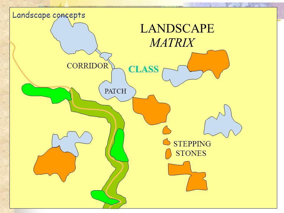 PATCH CLASS LANDSCAPE MATRIX CORRIDOR STEPPING STONES Landscape concepts