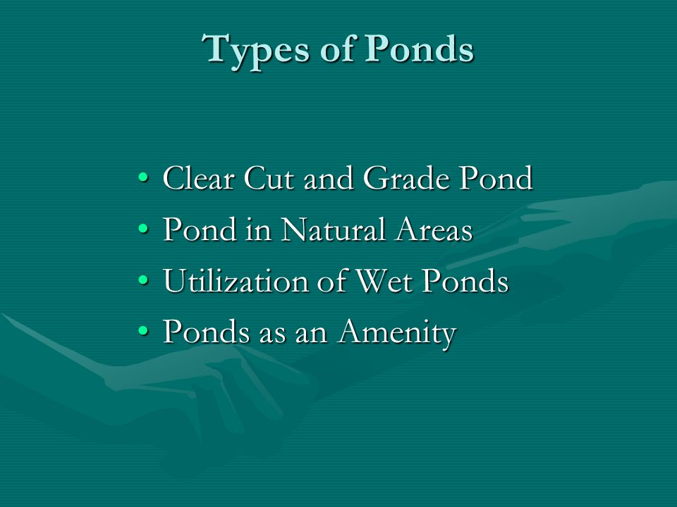Types of Ponds Clear Cut and Grade PondClear Cut and Grade Pond Pond in Natural AreasPond in Natural Areas Utilization of Wet PondsUtilization of Wet