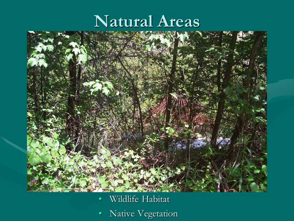 Natural Areas Wildlife Habitat Native Vegetation