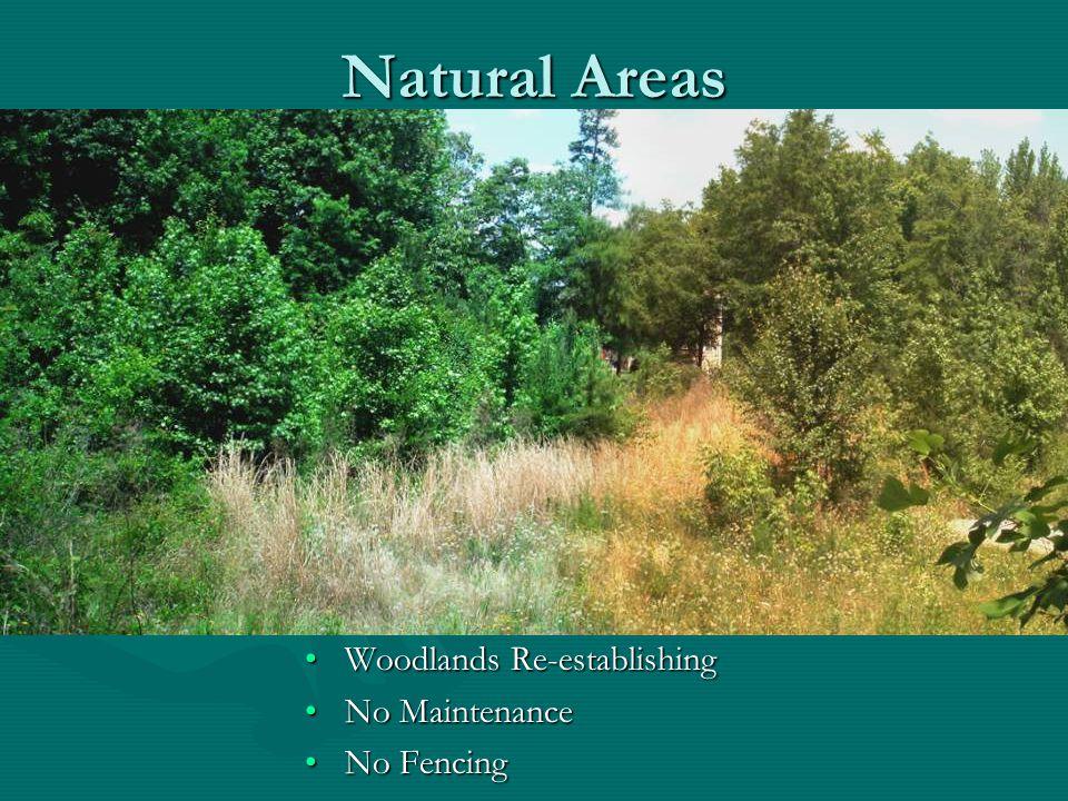 Natural Areas Woodlands Re-establishing No Maintenance No Fencing
