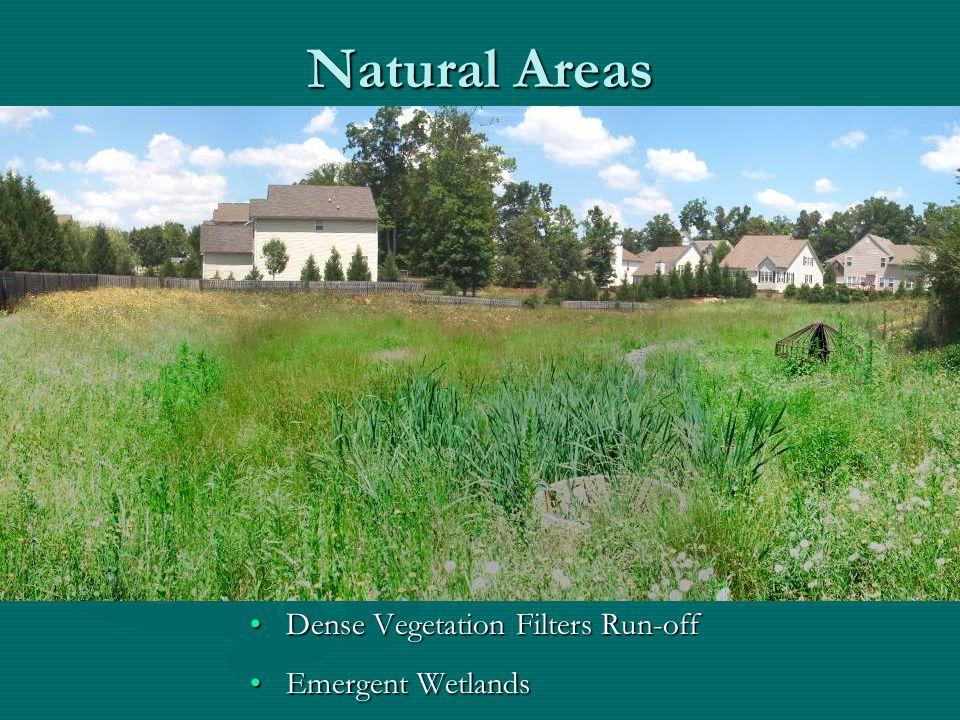 Natural Areas Dense Vegetation Filters Run-off Emergent Wetlands