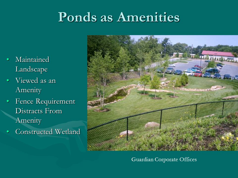 Ponds as Amenities Maintained Landscape Viewed as an Amenity Fence Requirement Distracts From Amenity Constructed Wetland Guardian Corporate Offices