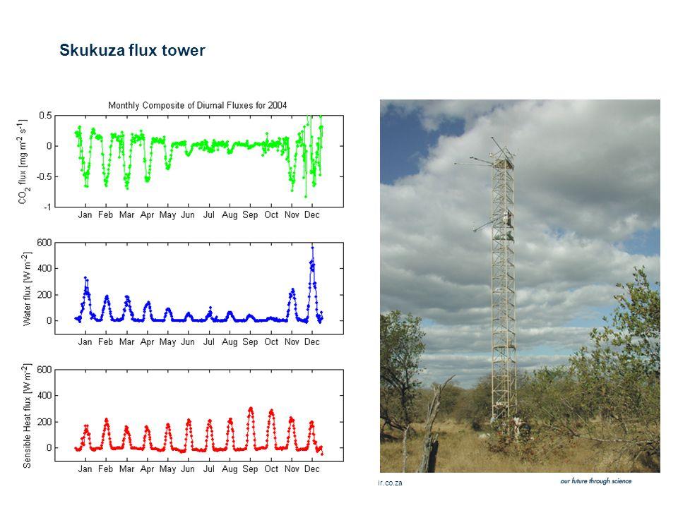 Slide 23 © CSIR 2006 www.csir.co.za Skukuza flux tower