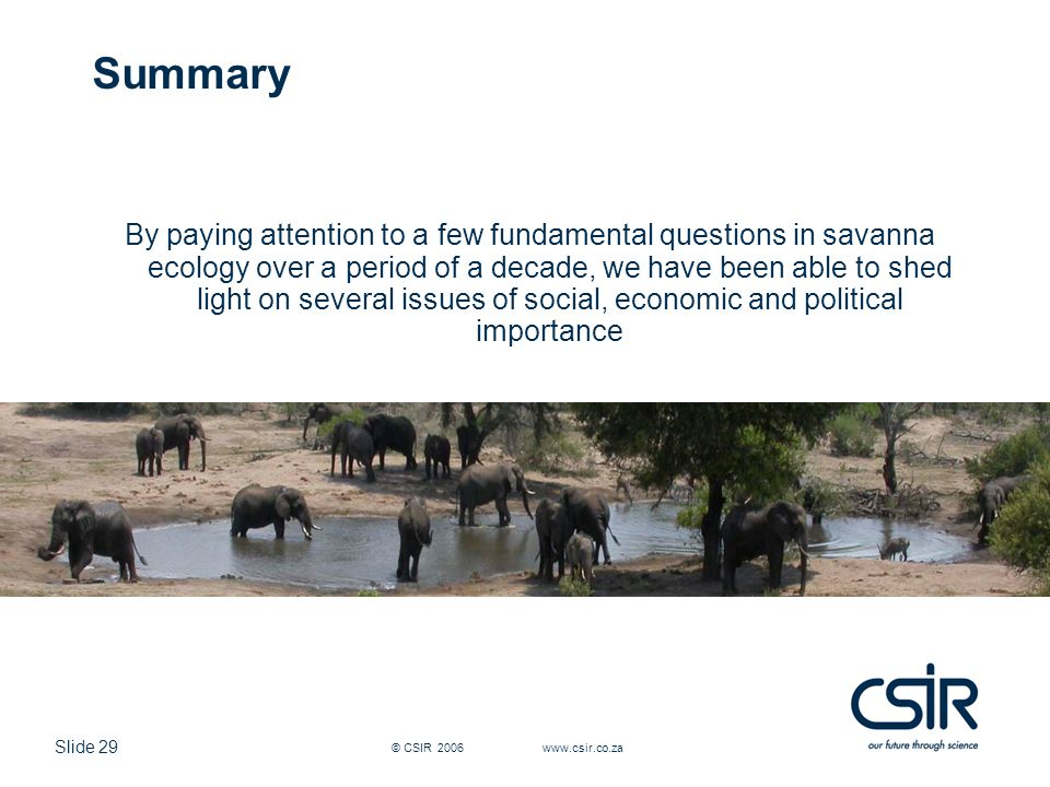 Slide 29 © CSIR 2006 www.csir.co.za Summary By paying attention to a few fundamental questions in savanna ecology over a period of a decade, we have been able to shed light on several issues of social, economic and political importance