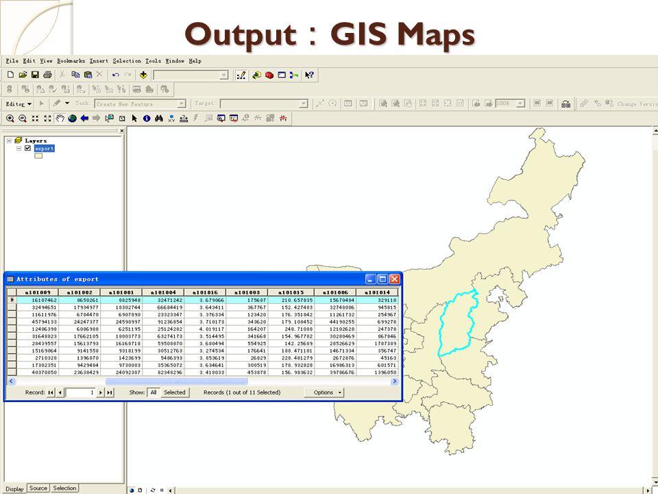 Output : GIS Maps