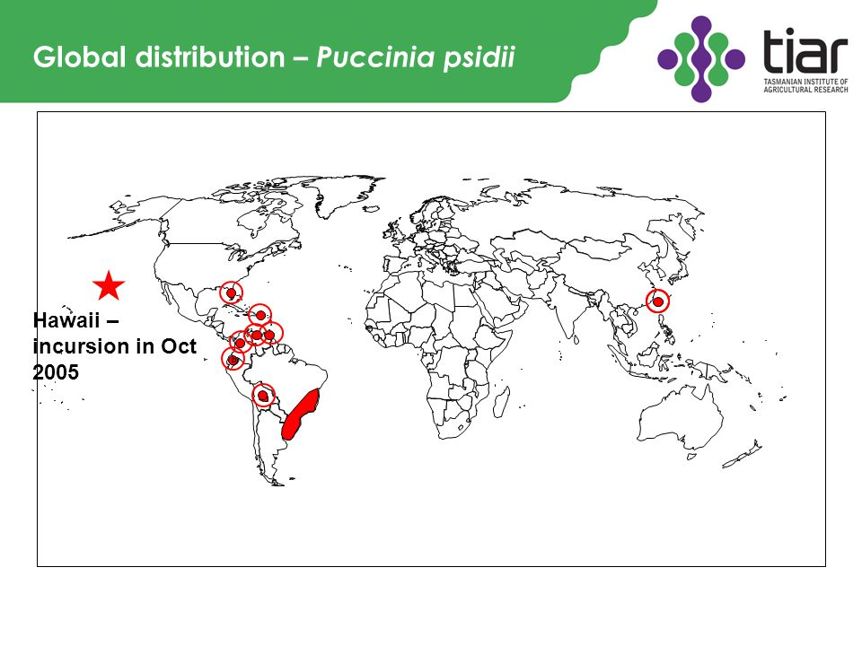 Global distribution – Puccinia psidii Hawaii – incursion in Oct 2005