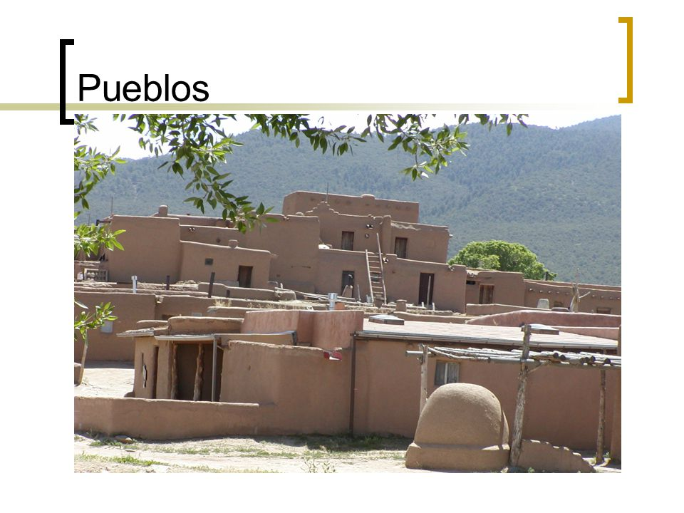 Pueblo Occupation The Pueblo Indians were farmers. They grew corn, beans, squash, and sunflowers.