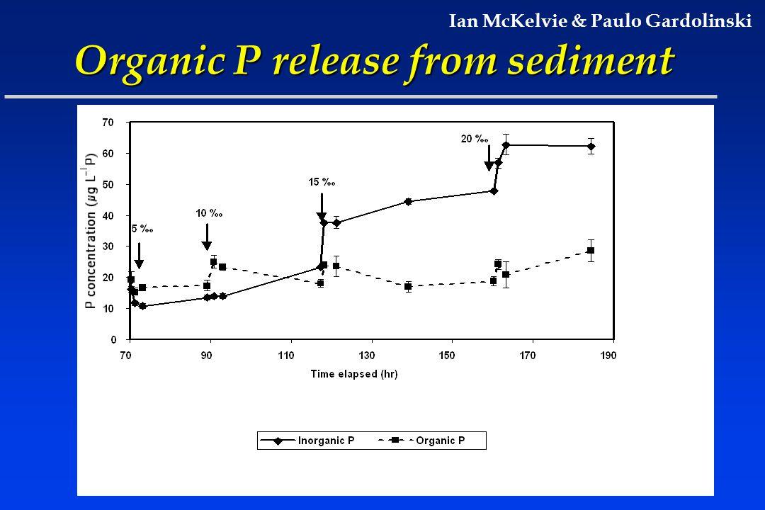 Organic P release from sediment Ian McKelvie & Paulo Gardolinski