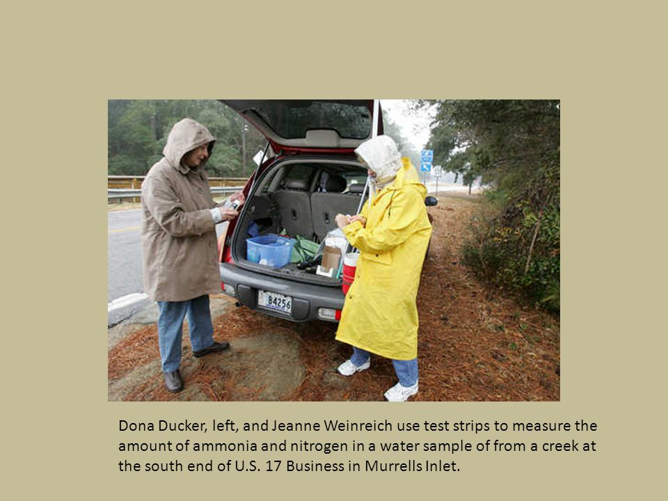 Dona Ducker, left, and Jeanne Weinreich collect samples of water from a creek at the south end of U.S.