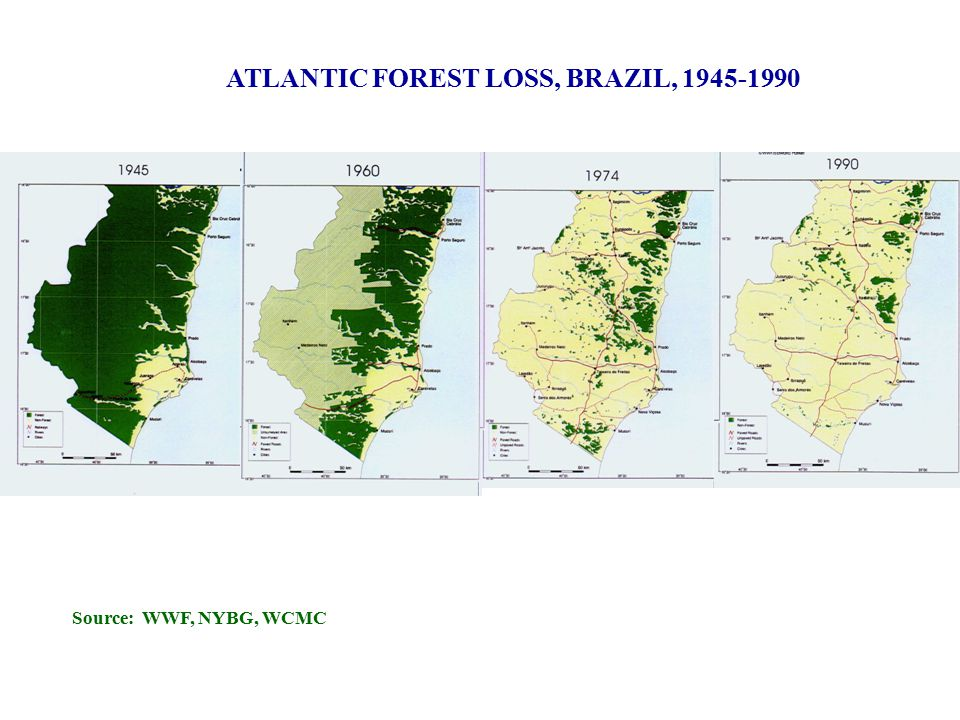 ATLANTIC FOREST LOSS, BRAZIL, 1945-1990 Source: WWF, NYBG, WCMC