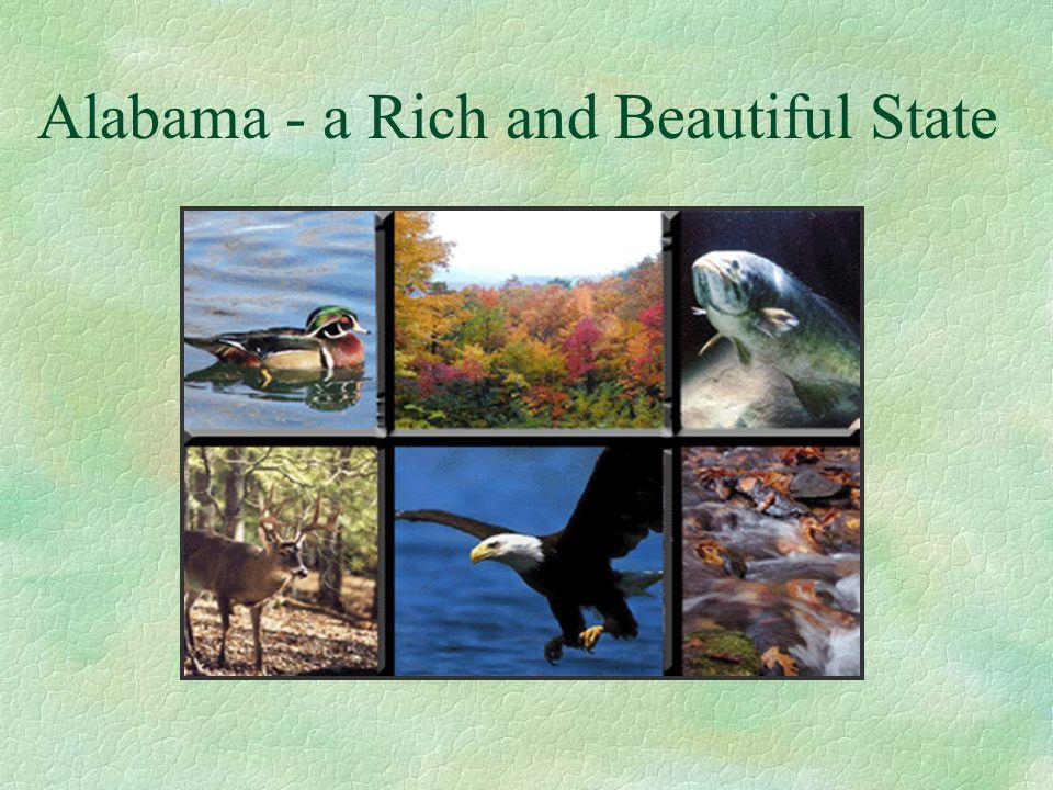 Alabama - a Rich and Beautiful State