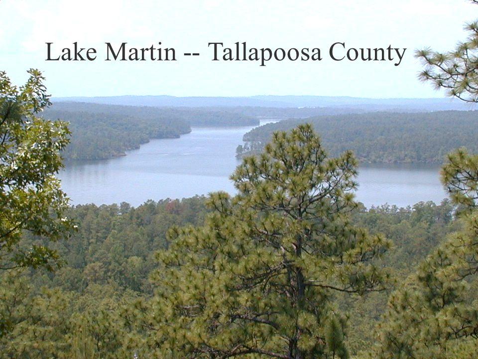 Lake Martin -- Tallapoosa County