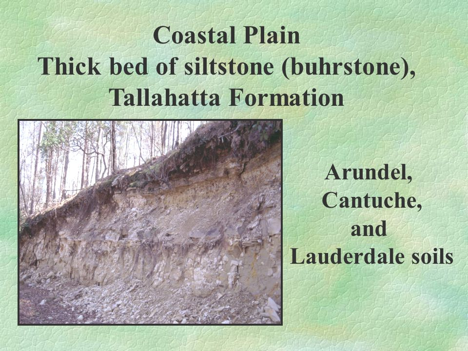 Coastal Plain Thinly stratified clays and shales Luverne and Boswell soils