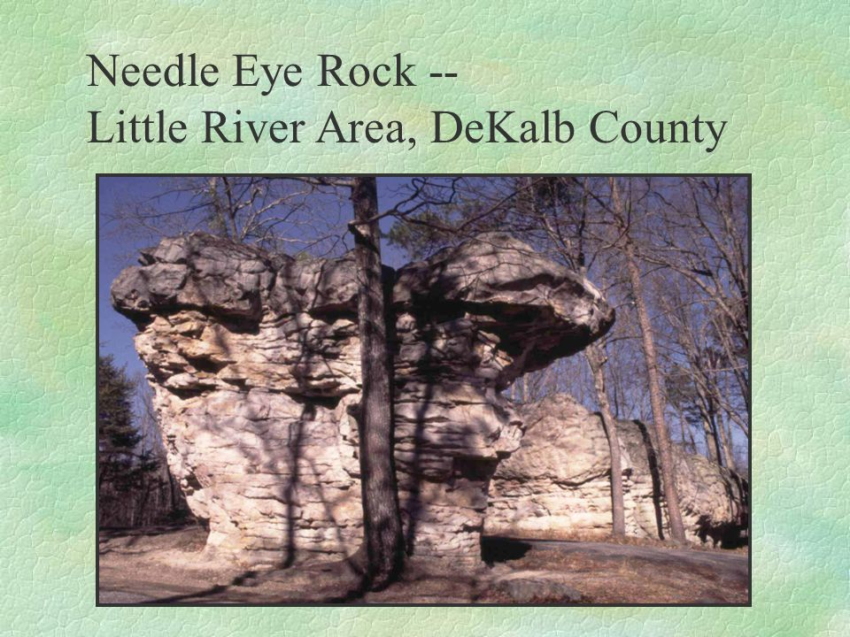 Barfield Series A shallow, clayey soil over hard limestone bedrock; Valley and Ridge Province