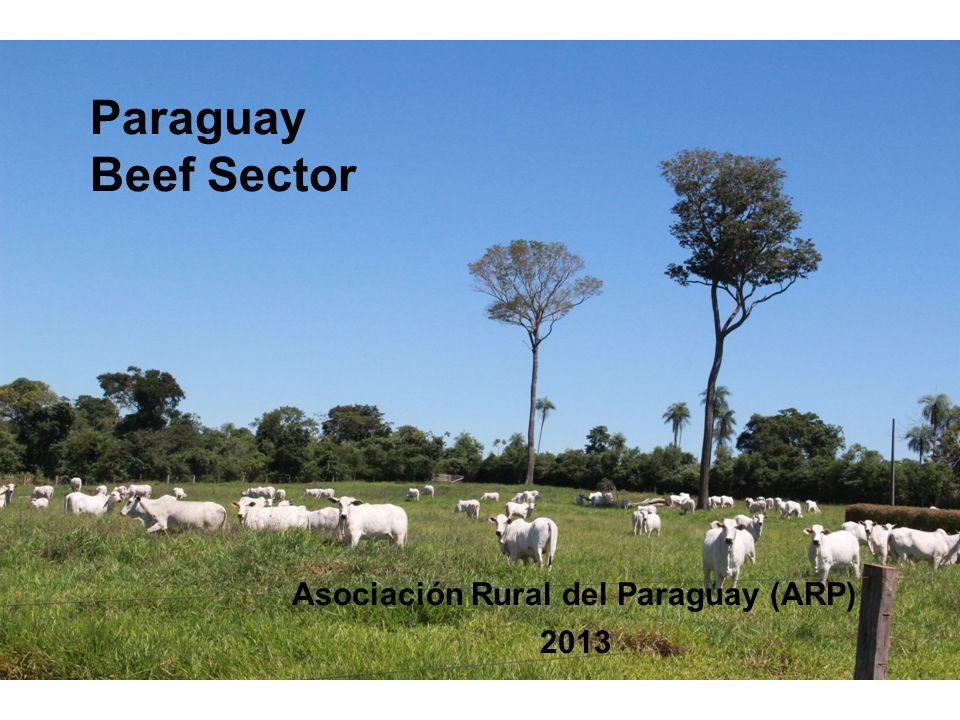 Paraguay Beef Sector Asociación Rural del Paraguay (ARP) 2013