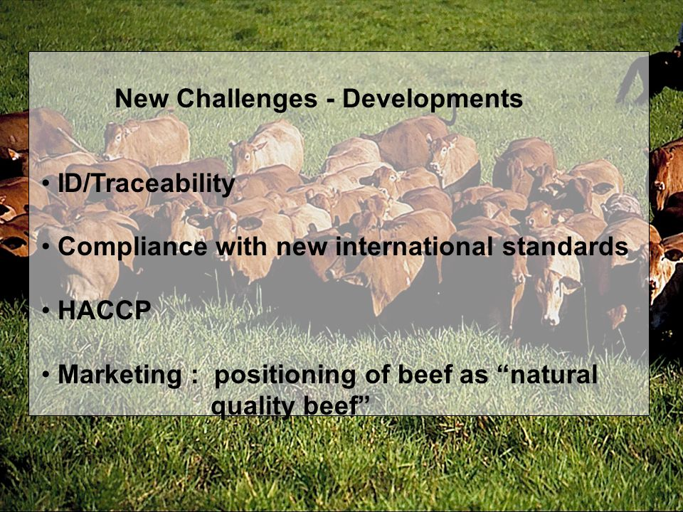 New Challenges - Developments ID/Traceability Compliance with new international standards HACCP Marketing : positioning of beef as natural quality beef