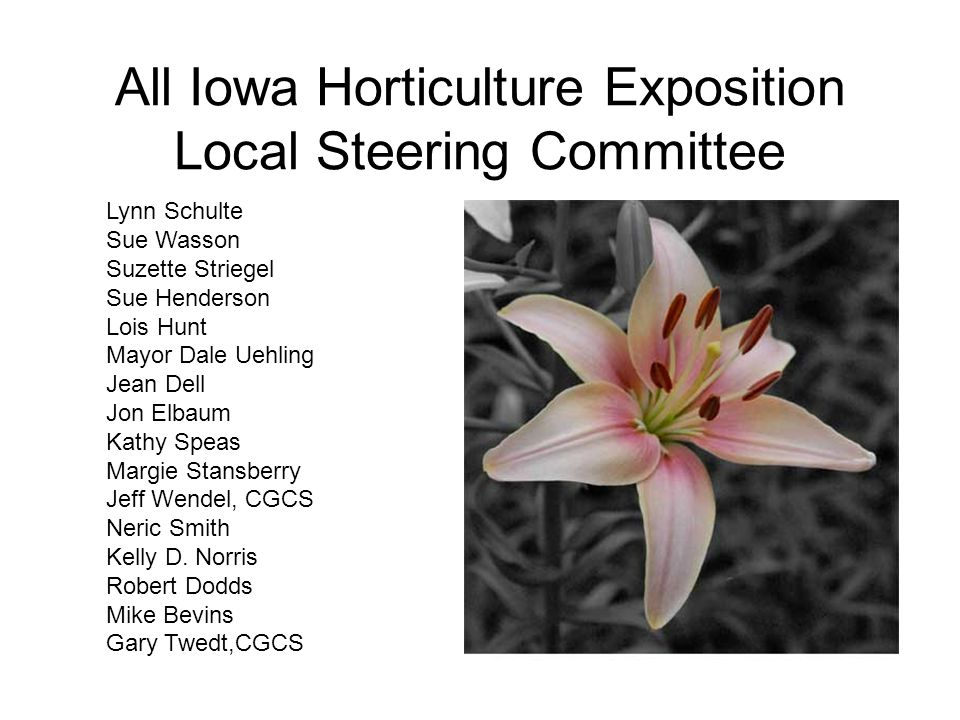 All Iowa Horticulture Exposition Local Steering Committee Lynn Schulte Sue Wasson Suzette Striegel Sue Henderson Lois Hunt Mayor Dale Uehling Jean Dell Jon Elbaum Kathy Speas Margie Stansberry Jeff Wendel, CGCS Neric Smith Kelly D.
