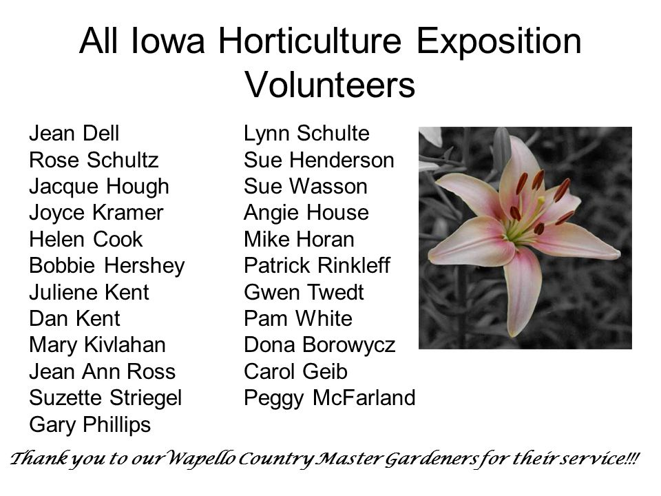 All Iowa Horticulture Exposition Volunteers Jean Dell Rose Schultz Jacque Hough Joyce Kramer Helen Cook Bobbie Hershey Juliene Kent Dan Kent Mary Kivlahan Jean Ann Ross Suzette Striegel Gary Phillips Lynn Schulte Sue Henderson Sue Wasson Angie House Mike Horan Patrick Rinkleff Gwen Twedt Pam White Dona Borowycz Carol Geib Peggy McFarland Thank you to ourWapello Country Master Gardeners for their service!!!