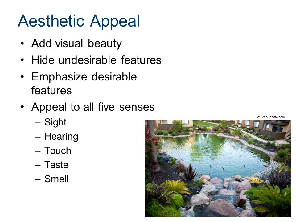 Aesthetic Appeal Add visual beauty Hide undesirable features Emphasize desirable features Appeal to all five senses –Sight –Hearing –Touch –Taste –Smell ©iStockphoto.com