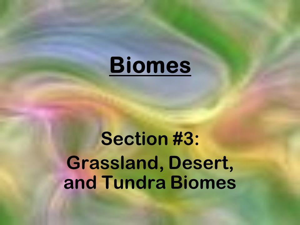 Biomes Section #3: Grassland, Desert, and Tundra Biomes
