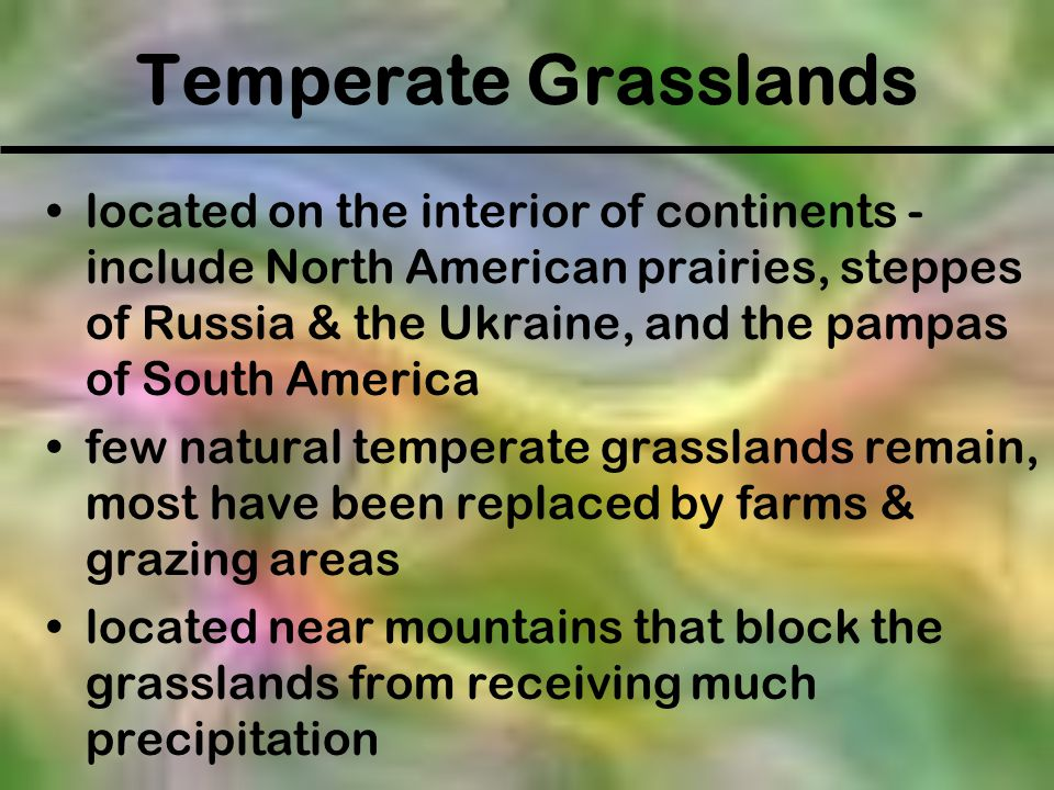 Temperate Grasslands located on the interior of continents - include North American prairies, steppes of Russia & the Ukraine, and the pampas of South